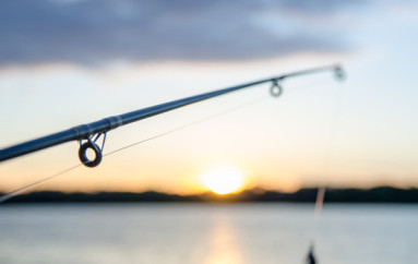 2012—Year of the Spinning Reel?