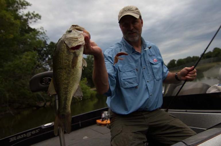 Carolina Lite Rig Penetrates Bass Jungle, Fishes Fast
