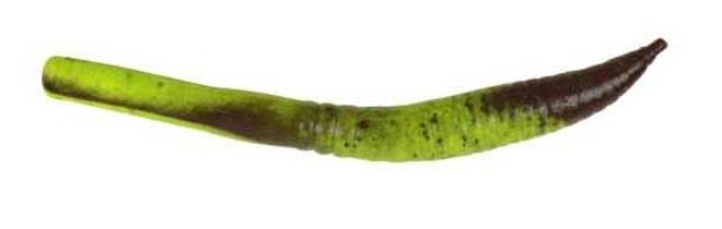 gulpcrawler