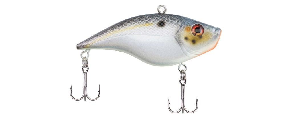 Size: 3 Inch; Color: Sexier Shad