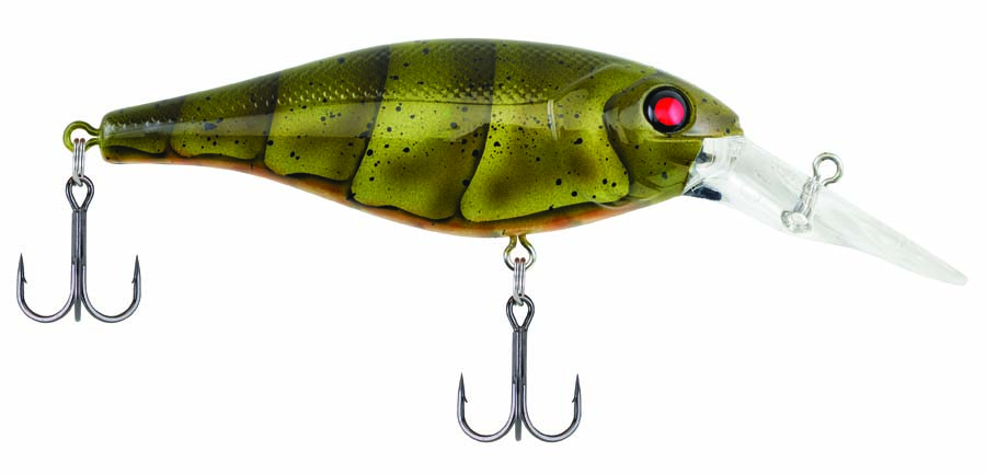 Berkley_Bad_Shad_2016