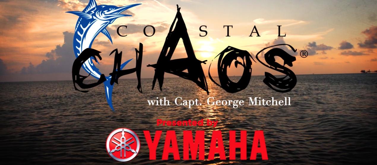 Coastal Chaos – Season 5